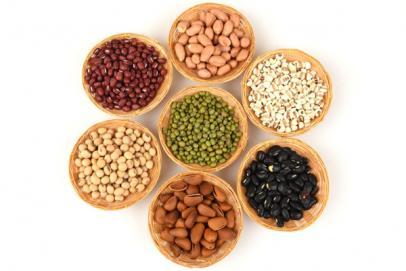 Tout savoir sur les protéines végétales