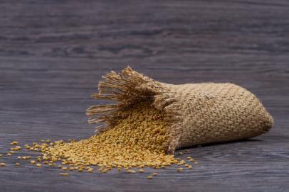 Fenugrec, une graine de vie